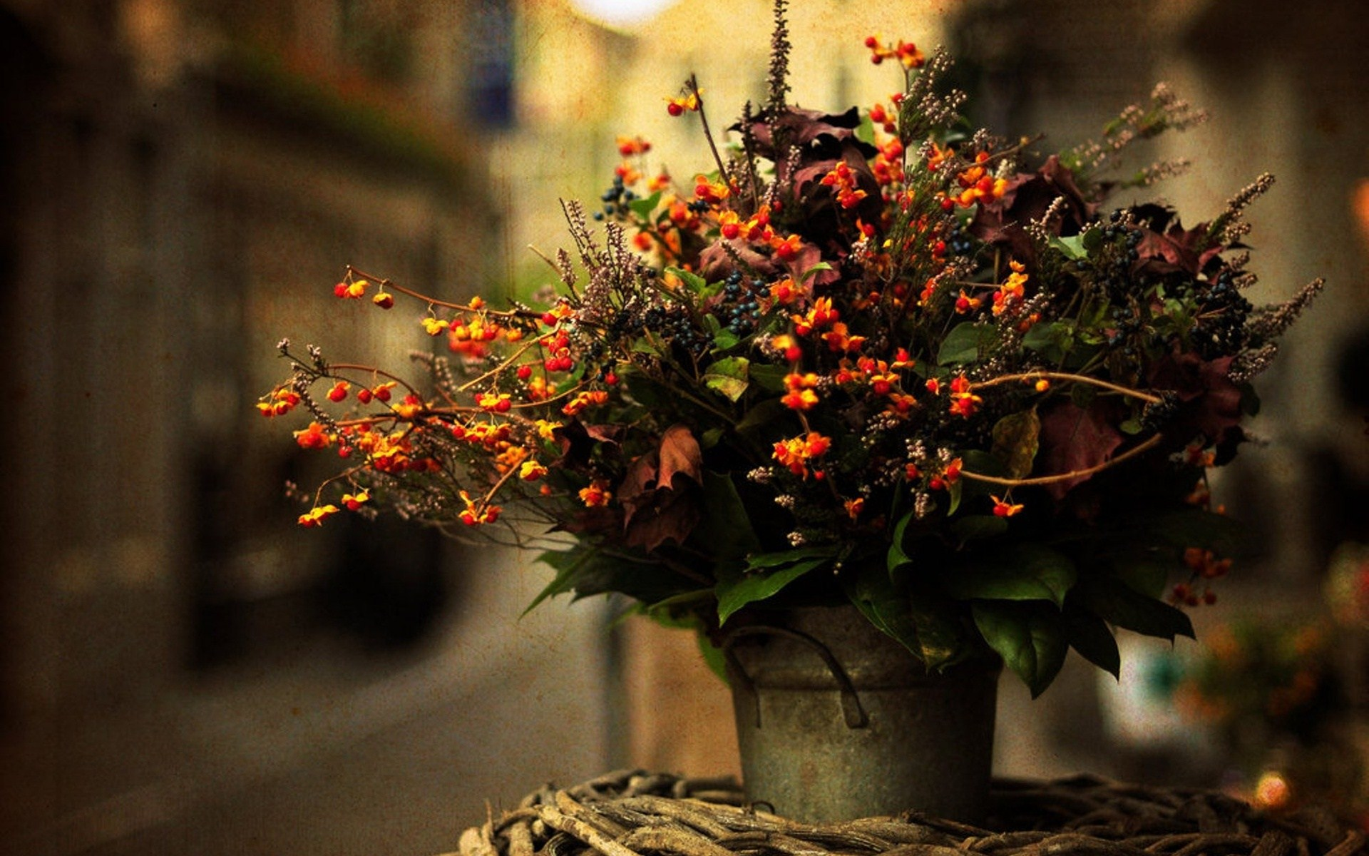 Flowers Of Autumn Flowers For The Soul Delivery Flowers
